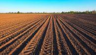 It's April 15, Time To Plant Corn