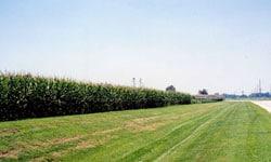 Brandenburg Farms property